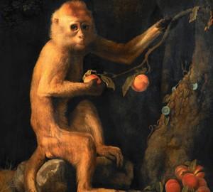 """""""Der grüne Affe"""", George Stubbs – Beschreibung des Gemäldes"""